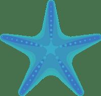 StarfishBlue