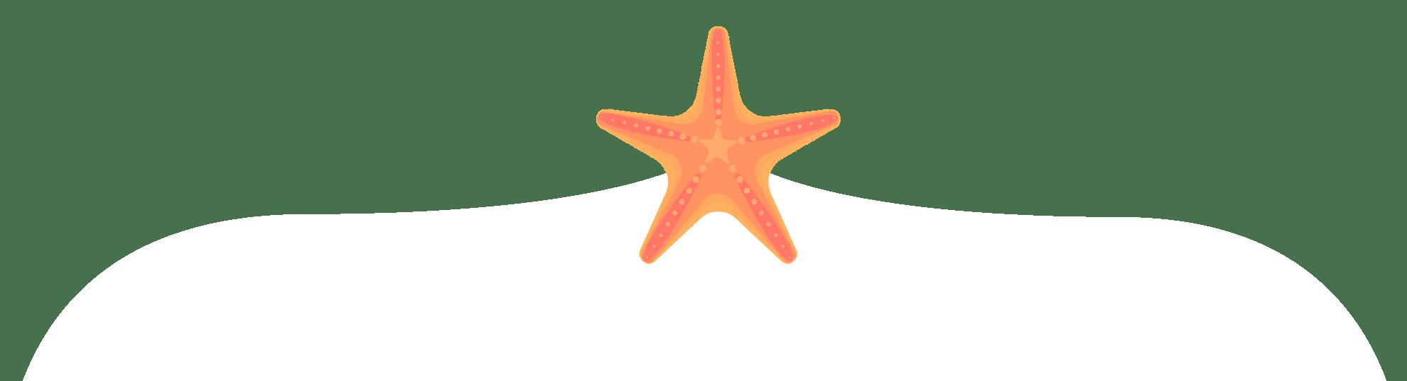 StarfishBracket